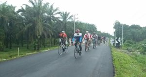 gowes (1)